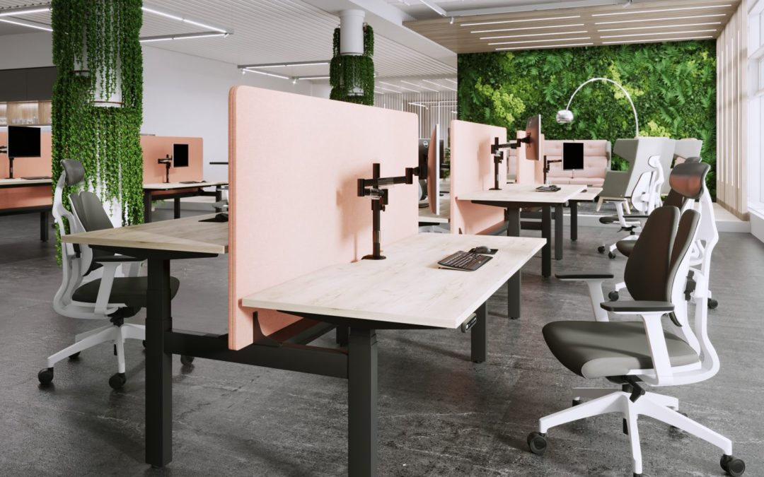 Everything you need to know about Height Adjustable Desks