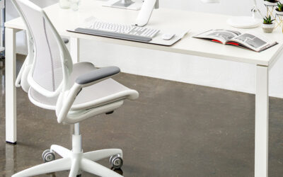 The Diffrient World from Humanscale